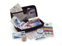 Kia Cadenza First Aid Kit, Large - 00083ADU22